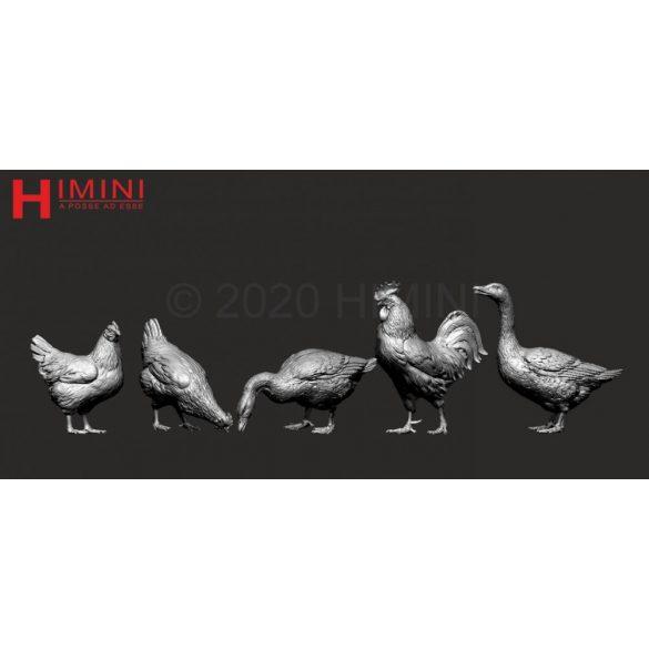 Set of birds for 75mm figures vol.1